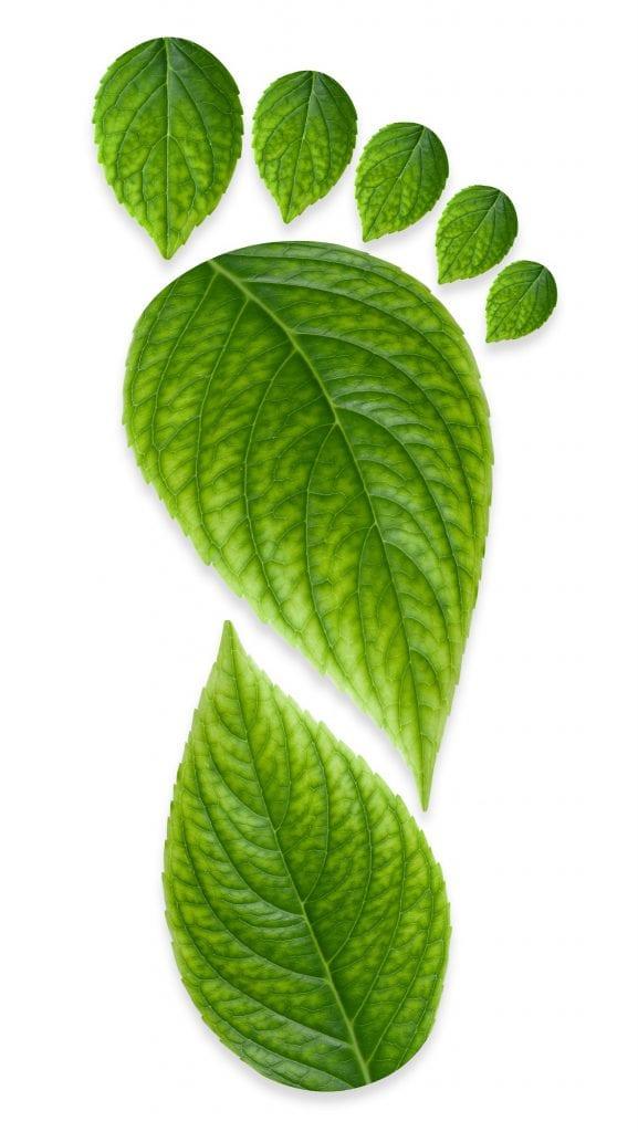 Green Carbon Foot Print
